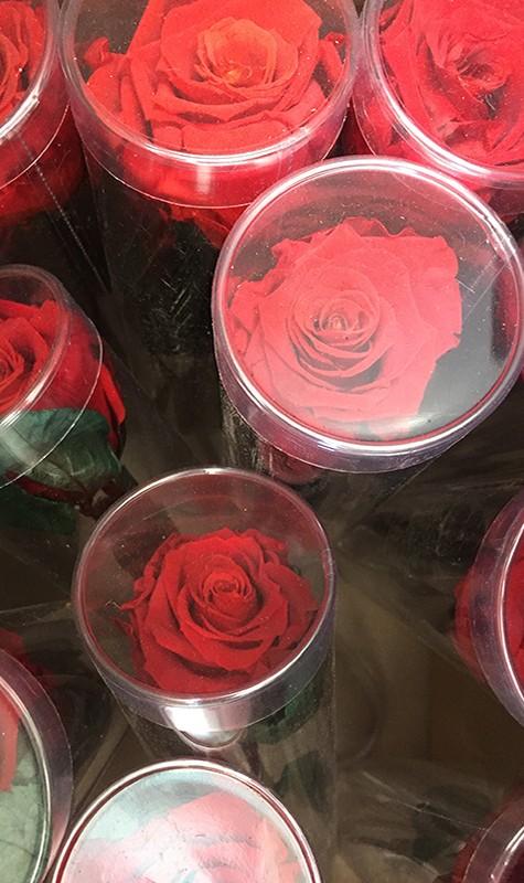 Flores con regalo